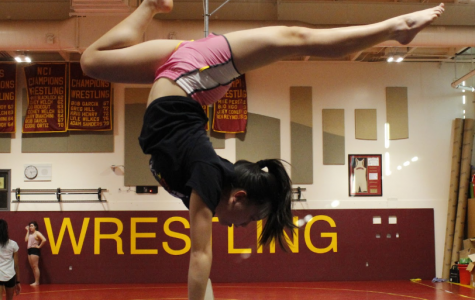 Spotlight – Gymnastics