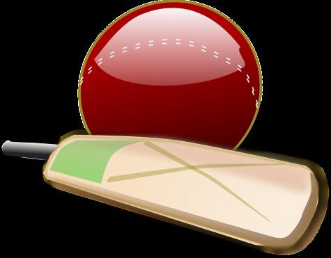 Schools should have a Cricket Team