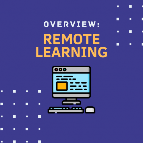 The Transition to Remote Learning