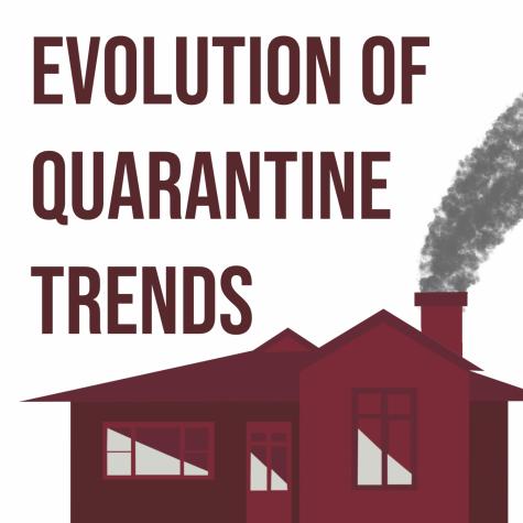 Quarantine Trends