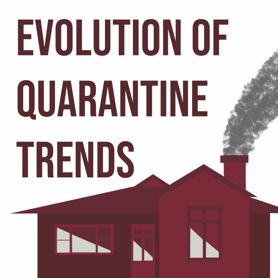Quarantine+Trends